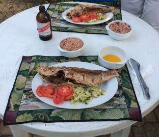 First dinner - snapper and rice & peas