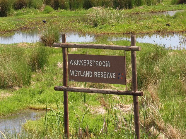 Wakkerstroom Wetlands