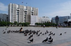 Lenin looks out over the Lenin square, complete with pigeons and junior pigeon feeder.