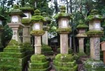 Stone lanterns covering the grounds of Kasuga Taisha.