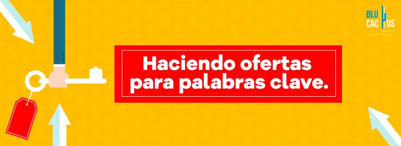 BluCactus Haciendo ofertas para palabras clave Google Adwords en Mexico anuncios