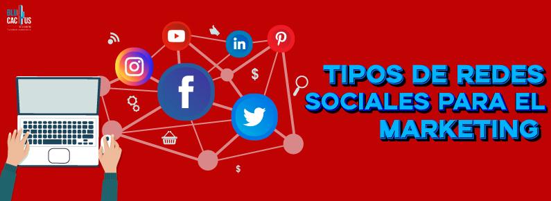 BluCactus Los tipos de redes sociales para el marketing