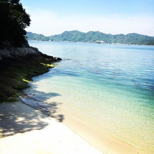 【Instagram】先日までのアイコン画像だった写真。これは、以前に大久野島で撮ったモノ。#スマホで撮影 #スマホ撮影 #スマホ写真ラボ #旅行写真