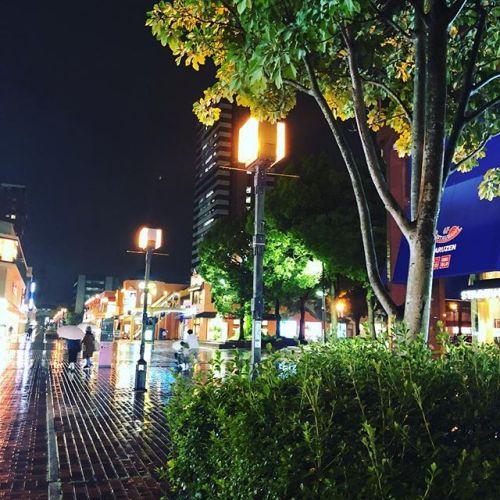 雨降りの夜。飲み会の帰り道。雨でキラキラ