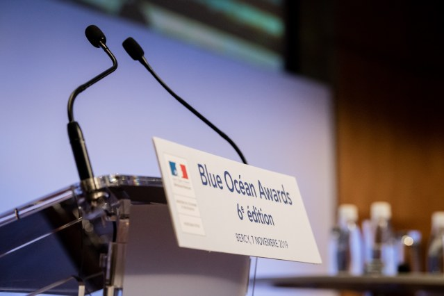 Initiation Blue Ocean Strategy & Analyse vainqueurs Blue Ocean Awards