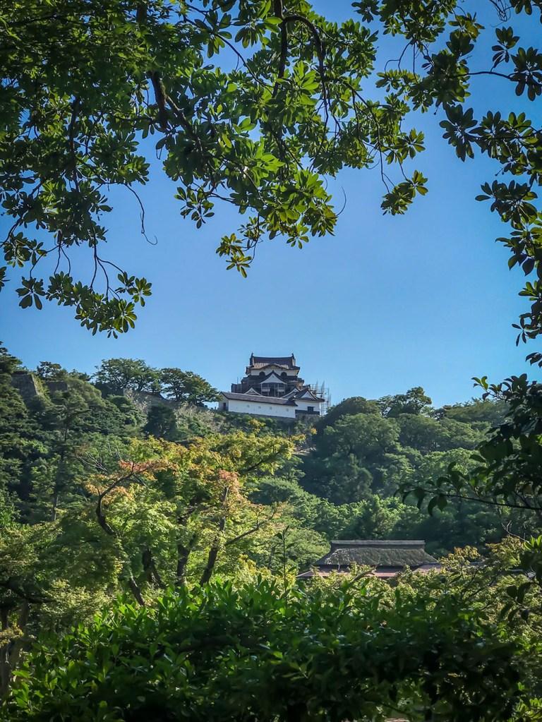 Hikone Castle garden