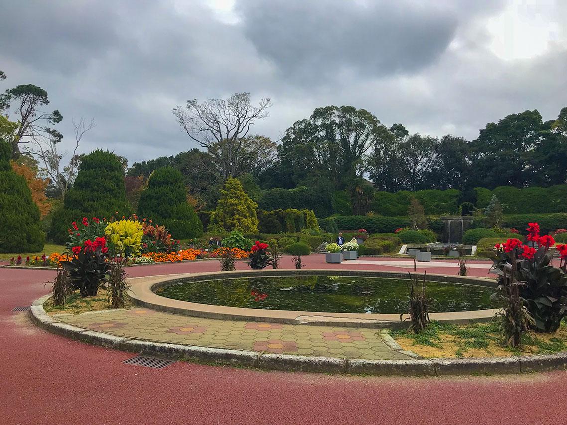 הגן הבוטני קיוטו