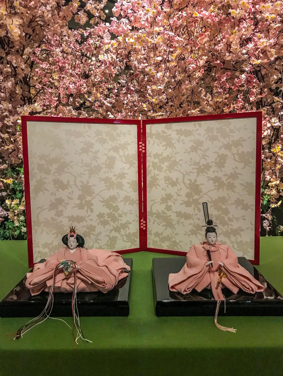 פריחת דובדבן ביפן