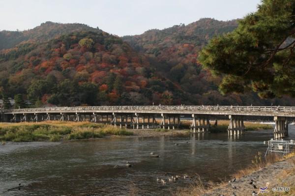Togetsukyo is the icon of Arashiyama. ©Yasufumi Nishi/©JNTO
