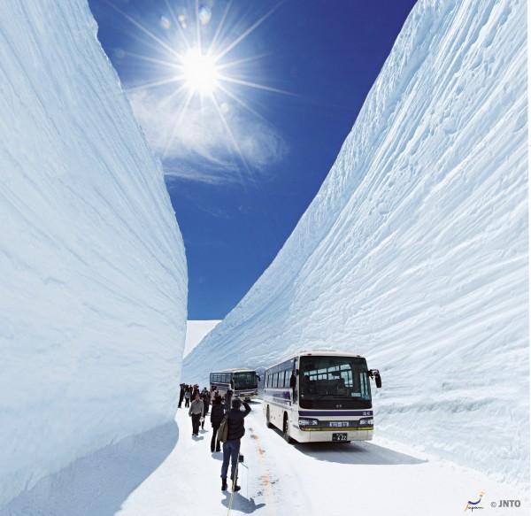 Image result for tateyama kurobe alpine route tour