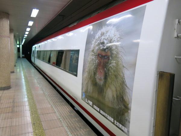 2016 winter Japan trip 1004
