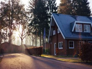 A suburban home surrounded by trees, where movers Edison NJ will relocate you.