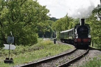 South Eastern Railway Stirling 0-6-0 No.65 Steaming North at Horsted House Foot Crossing
