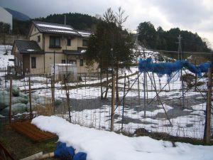 育成場所の写真