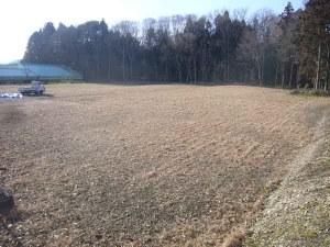 園地の草刈り終了