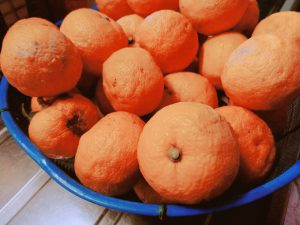 ざる一杯の柚子