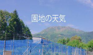 園地の天気バナー画像