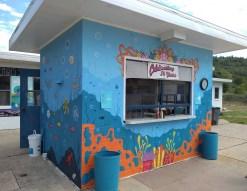 pool mural 12