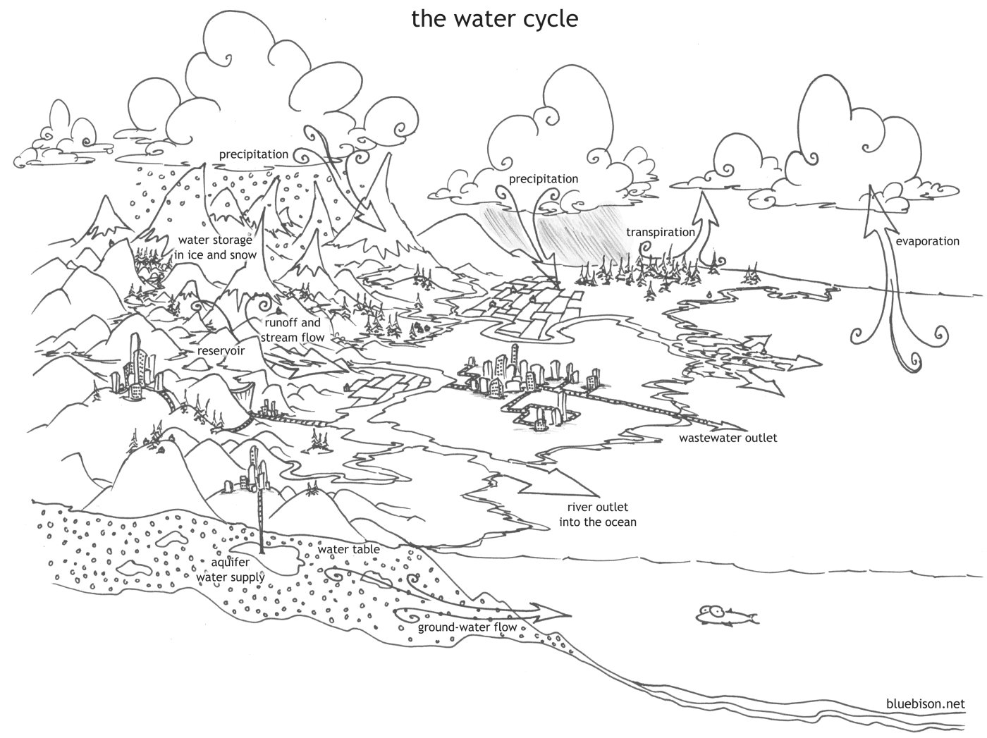 Coloring Pages The Water Cycle