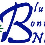 Bluebonnet News logo 2