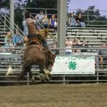 2019dayton FFA rodeo 21