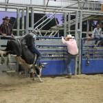 2019dayton FFA rodeo 25