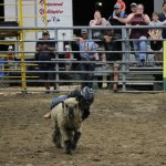 2019dayton FFA rodeo 36