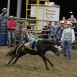 2019dayton FFA rodeo 53