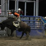2019dayton FFA rodeo 74