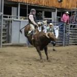 2019dayton FFA rodeo 78