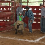 0421rodeo youth events 7