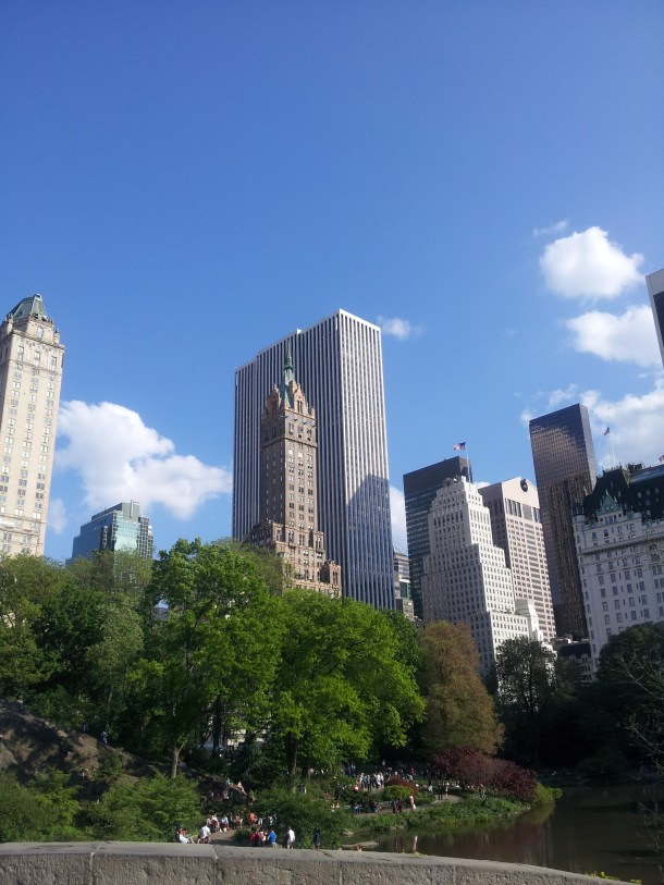 View from Central Park on our 2 hour jaunt through the many terroirs