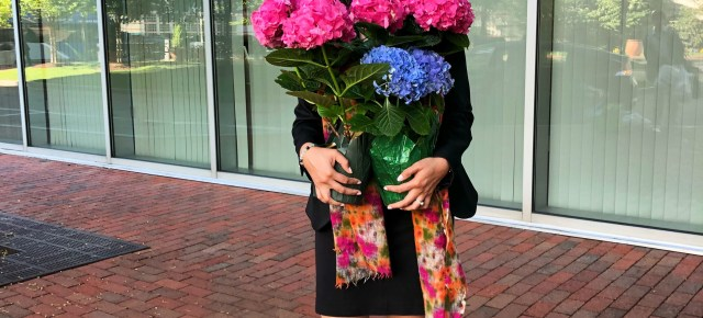 Where the BlueBoots Go | Professional Women's Work Wardrobe | bluebootsgo.com
