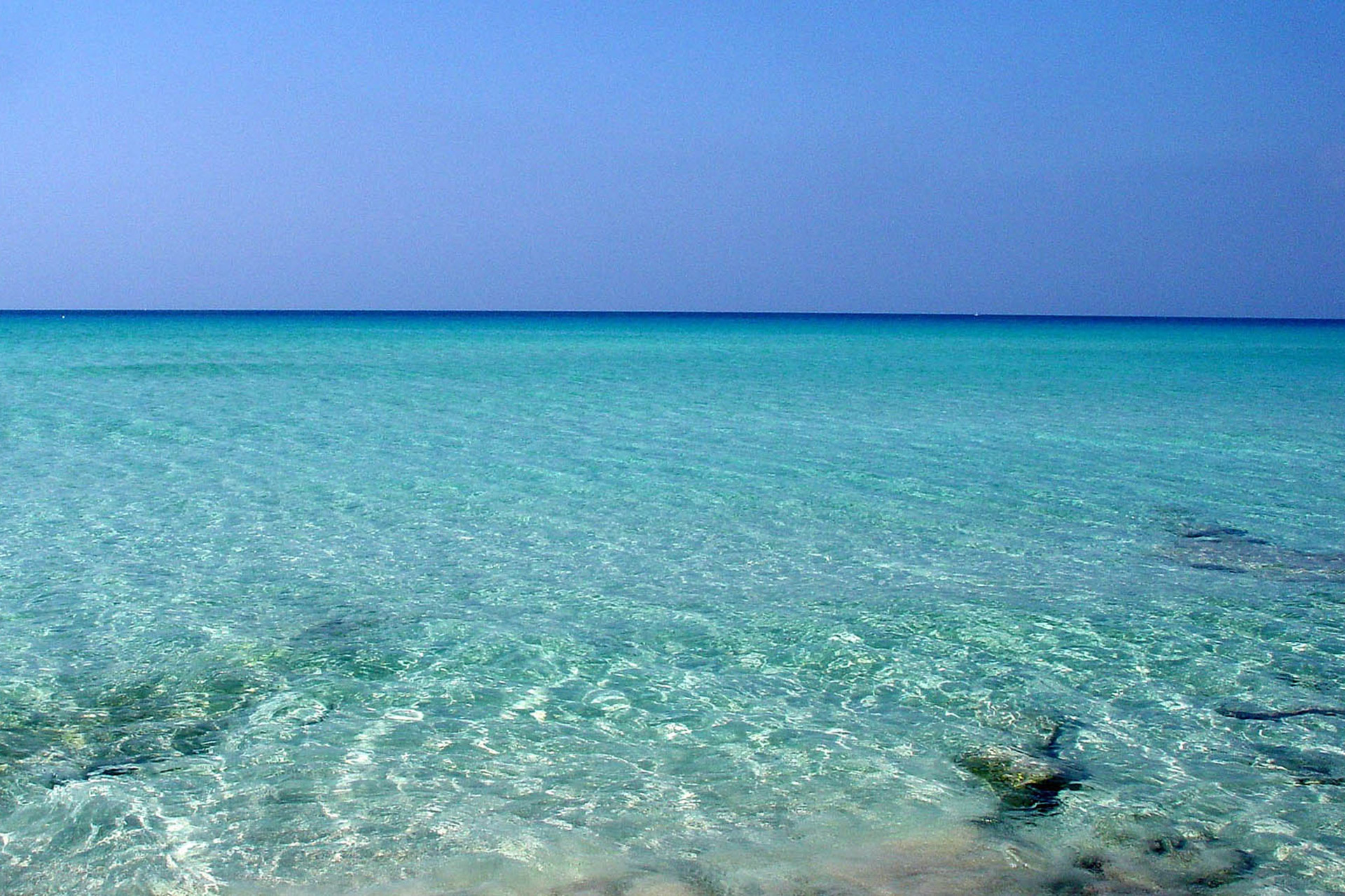 Formentera Blue Experience by Blue Bubble World