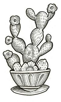 Blue Cactus Press