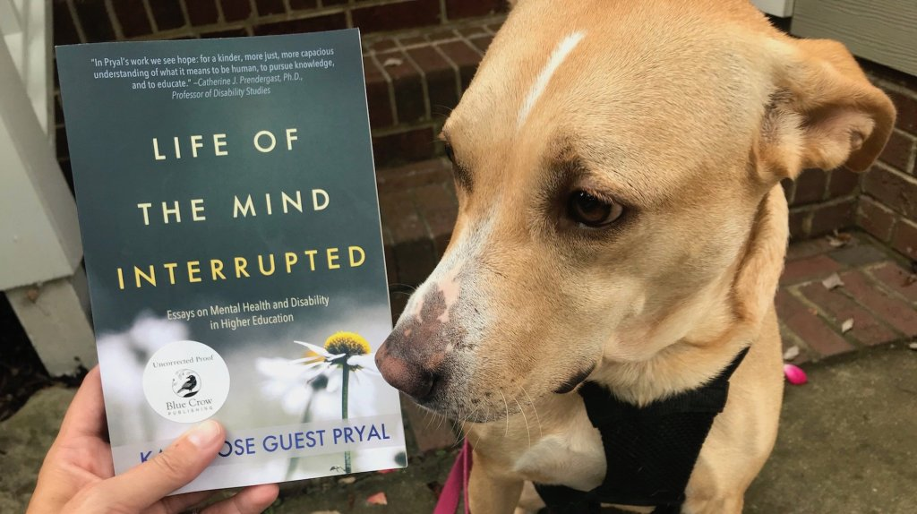 A photograph of the book, which has a green cover, alongside Corey the dog, a yellow lab mix.