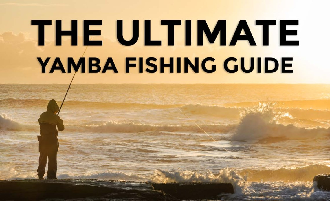 Ultimate Fishing Guide Yamba