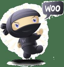 WooTheme Customization