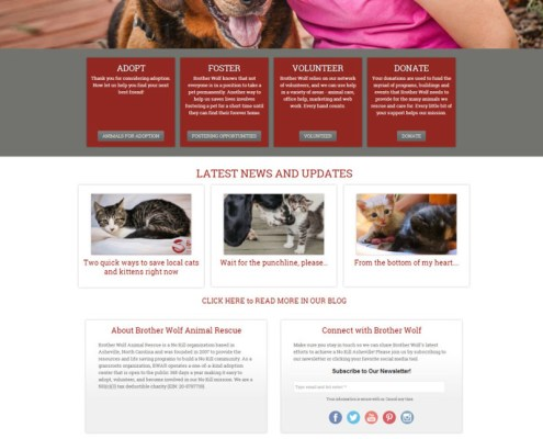 Web Design for Brother Wolf Animal Rescue in Asheville
