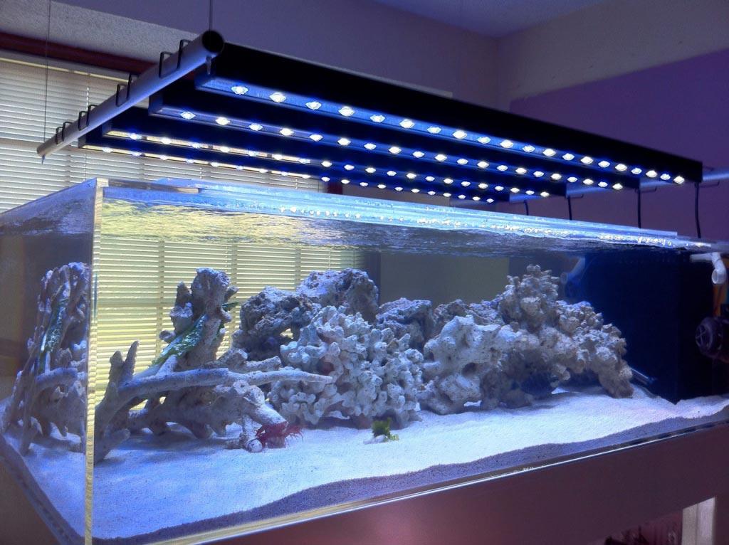 understanding marine aquarium lighting