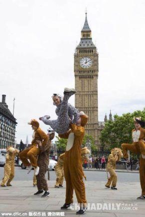 Animal Flashmob in London