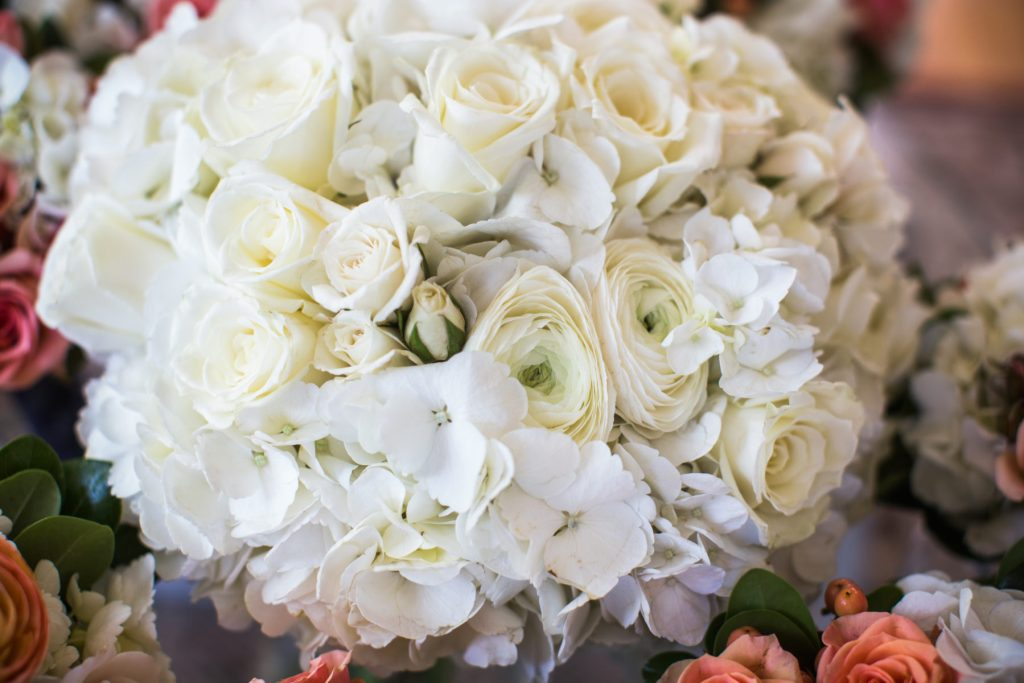 white bride's bouquet : white hydrangea, white roses, and white ranunculus