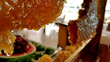 antalya açıkbüfe kahvaltı konyaaltı denize kenarında oteller best breakfast in antalya (9)