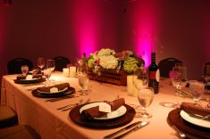Uplighting and music by Jim of Tagas Event and Production.