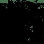Majycs 1.0 : Aide à la mise à jour d'une installation de Médycs