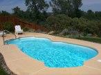 blue hawaiian pools of michigan wellington pool 03