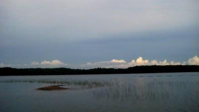 Seagull Island   Blue Lake Free Press