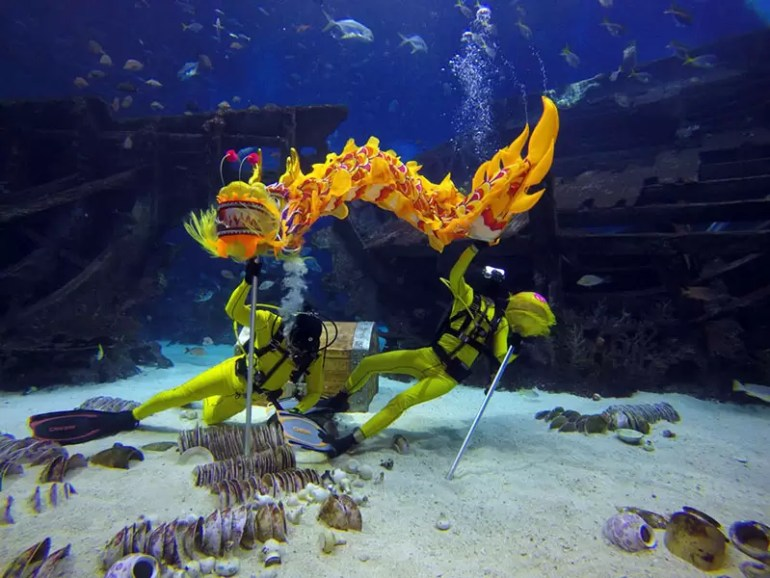 seaa-underwater-dragon-dance