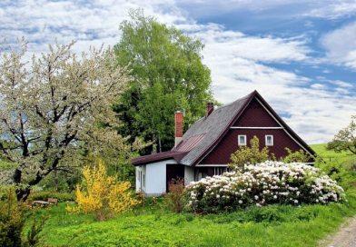 chata se zahradou