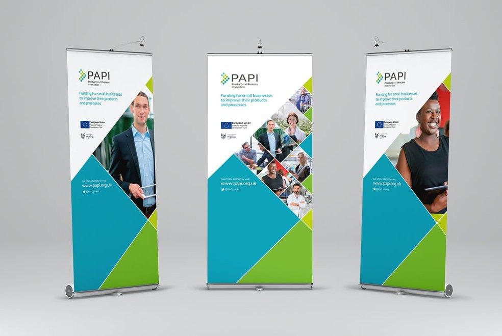 PAPI_bnrs1